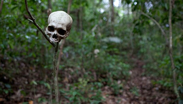 A human skull on The most dangerous hike in the world.